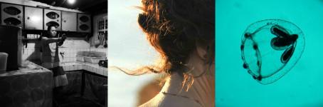 Venezia 2016: Uppers – I migliori film in concorso