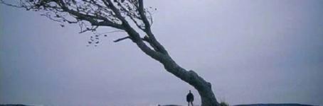 Lars amandi: NYMPH()MANIAC VOL. 2 di Lars von Trier